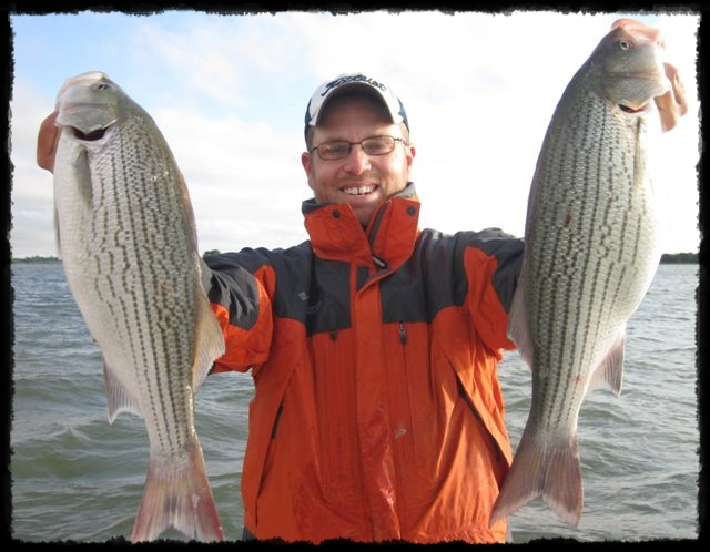 Fishing Guide Mitch Parker catching hybrid stripers on Richland Chambers